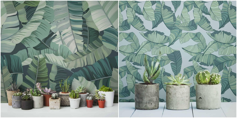 murals-wallpaper1