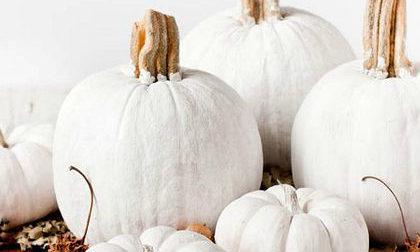 Zucche bianche per decorare casa