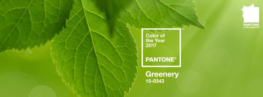 Pantone: il 2017 sarà Greenery