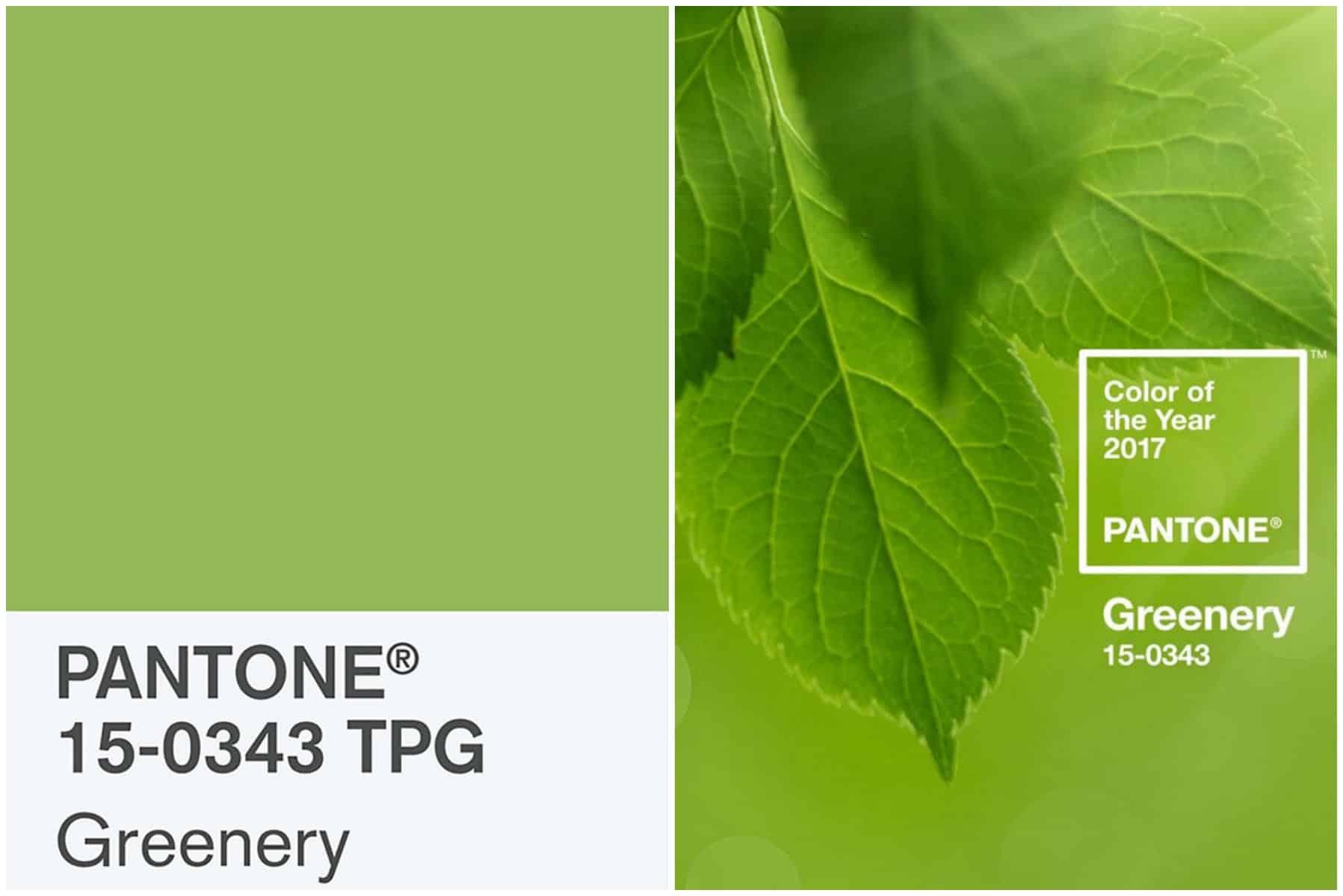 Pantone il 2017 sar greenery arscity for Verde pantone 2017