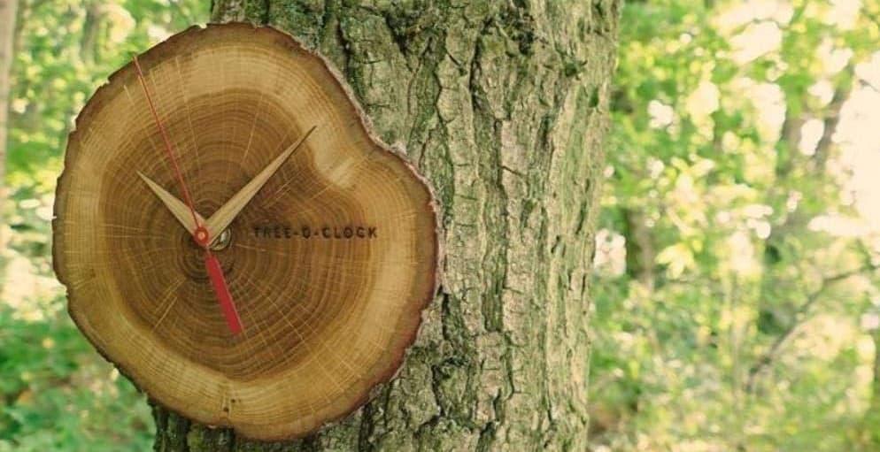 orologi da parete in legno